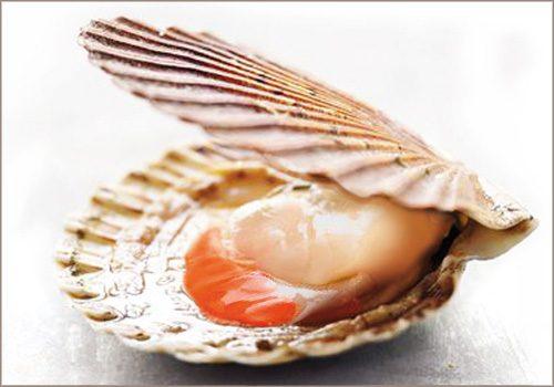 Recette : Noix de St-Jacques panées aux épices douces - EpiSaveurs